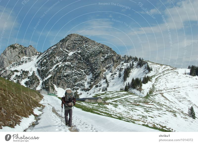 Walk the line Mensch Natur Ferien & Urlaub & Reisen Mann blau grün Landschaft ruhig Winter Ferne Erwachsene Berge u. Gebirge Bewegung Schnee Freiheit maskulin