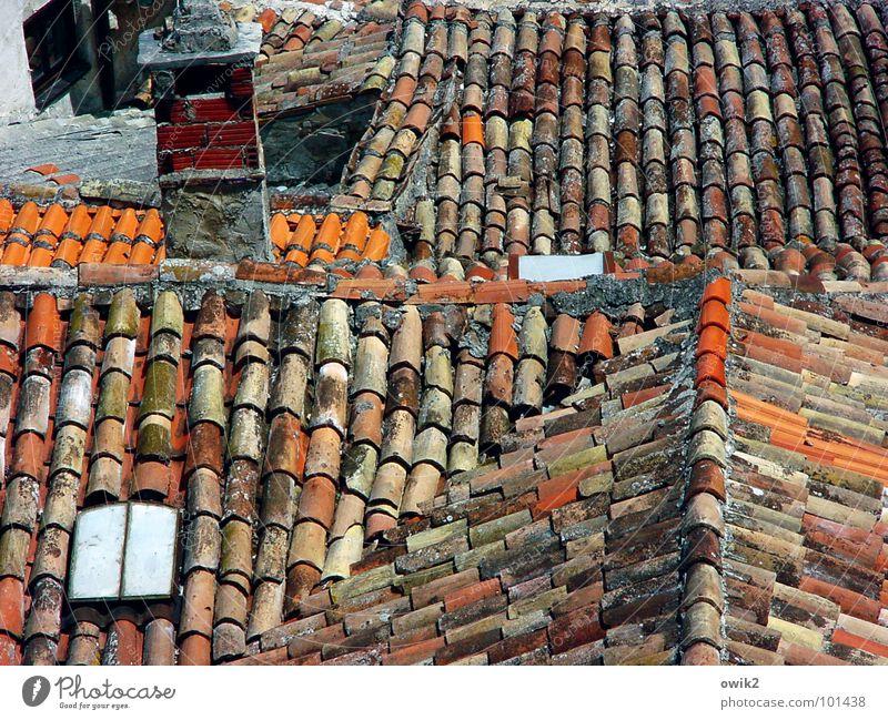 Kroatische Dächer alt rot Haus Gebäude Idylle einfach Dach historisch viele Altstadt Schornstein Mittelmeer Kleinstadt Kroatien bevölkert Dachziegel