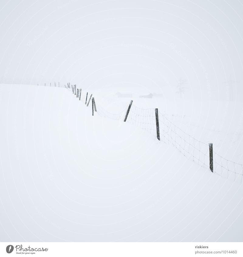 white out Umwelt Natur Landschaft Winter Wetter Schnee Schneefall Hügel Zaun frei kalt weiß ruhig Sehnsucht Einsamkeit Freiheit Idylle Wege & Pfade