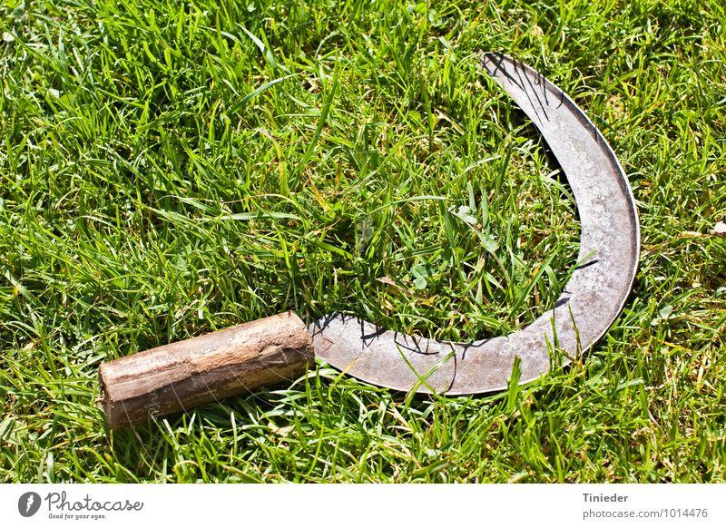 Sichel Gartenarbeit Landwirtschaft Forstwirtschaft Werkzeug Sommer Gras Wiese Tradition Schneidewerkzeug mähen Farbfoto Nahaufnahme Tag Vogelperspektive