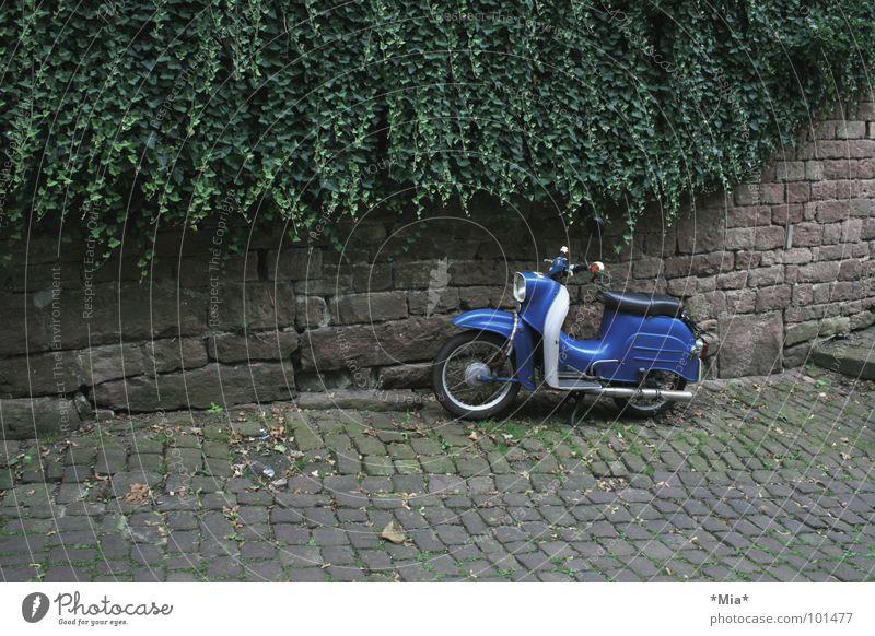 - abgestellt - Kleinmotorrad Fahrzeug grün braun Mauer dunkel Verkehr Kopfsteinplaster Pflanze blau Fahrradlenker Sitzgelegenheit Gedeckte Farben parken