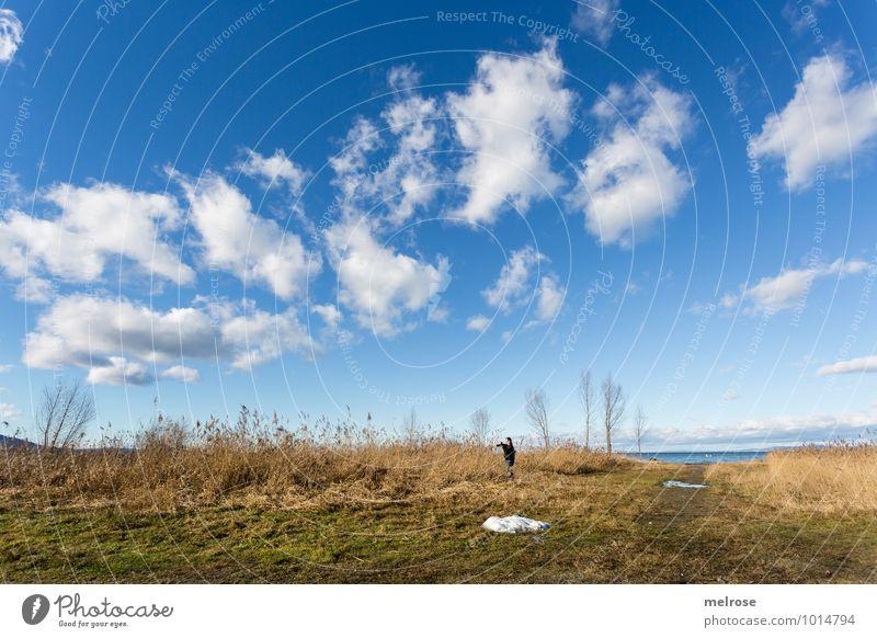 allein auf weiter Flur Himmel Natur Ferien & Urlaub & Reisen grün Wasser Baum Erholung Einsamkeit Landschaft ruhig Wolken Strand Winter Umwelt Gras Freiheit