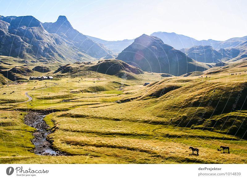 Wo ist Frodo? Freizeit & Hobby Ferien & Urlaub & Reisen Tourismus Ausflug Abenteuer Ferne Freiheit Berge u. Gebirge Umwelt Natur Landschaft Pflanze Tier