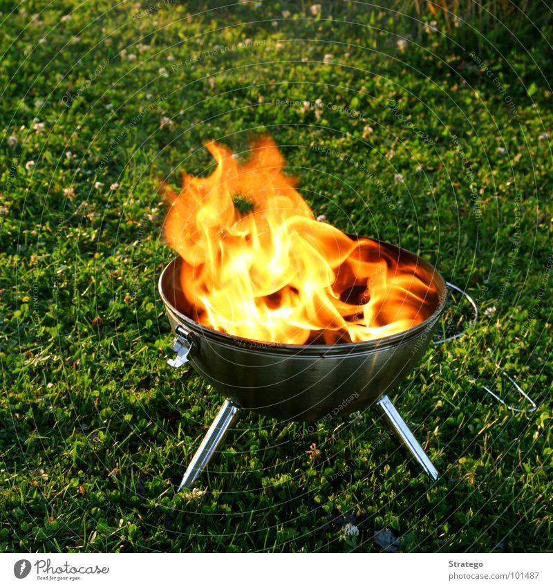 Ein Feuerchen Glut Staub schwarz züngeln gelb heiß Physik Grill Wiese Holz Sommer Grillen Standbein Blech Schnalle Brand Flamme Russ Rauch Wärme grillieren