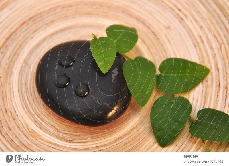 relaxing decoration to feel good Teller Schalen & Schüsseln Erholung Natur Pflanze Wassertropfen Blatt Stein Holz Lebensfreude schön Reinheit abstract ausruhen