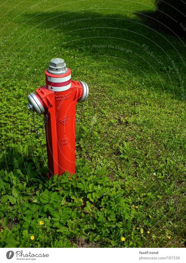 wer sich ärgert bleibt allein Hydrant Wiese rot grün löschen Klee zusätzlich Sommer Feuerlöscher Einsamkeit einzeln Schraube Wahrzeichen Denkmal obskur Metall