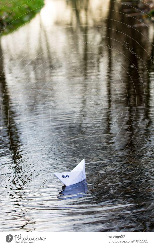Wasserzeichen | Flussschifffahrt Ferien & Urlaub & Reisen grün weiß Freude Spielen braun Wasserfahrzeug fahren Flussufer Schifffahrt Bach Bootsfahrt