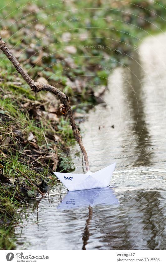 selbstgemacht   Papierboot II grün Gras Spielen braun Wasserfahrzeug Zweig Bach Wasseroberfläche maritim Bootsfahrt kindisch Papierschiff Bachufer Spieltrieb