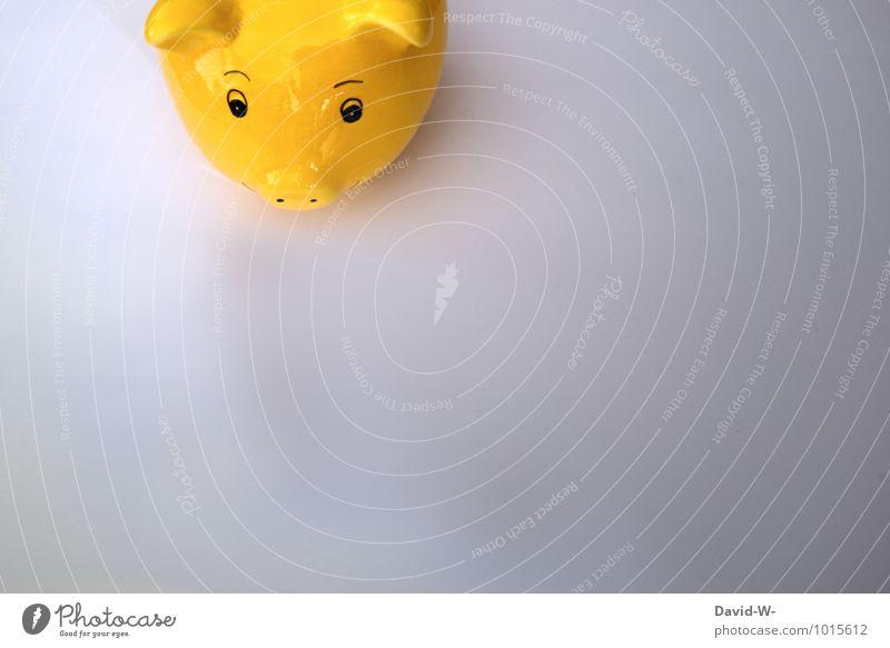Lieblingstier Ferien & Urlaub & Reisen gelb Arbeit & Erwerbstätigkeit Geburtstag Armut Zeichen kaufen Geld Geldinstitut Handel Reichtum Wirtschaft reich Ruhestand Kindererziehung sparen