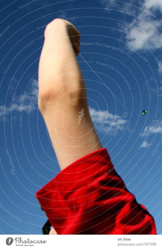Lange Leitung Leichtigkeit träumen Sommer Wiese Wolken führen bequem Freude Freizeit & Hobby Drache Seil Wind Arme festhalten lenken liegen
