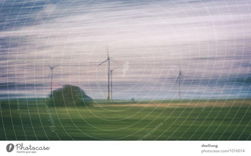 Märchenwald Fortschritt Zukunft High-Tech Energiewirtschaft Erneuerbare Energie Windkraftanlage Landschaft Sträucher Klima Konkurrenz modern nachhaltig Netzwerk