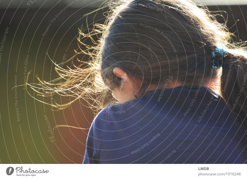 Ruhepause Mensch Kind blau grün ruhig Mädchen feminin natürlich Glück Haare & Frisuren braun Kopf leuchten Zufriedenheit Kindheit beobachten