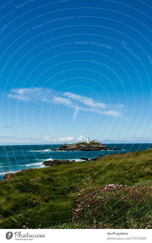 Ein letzer Blick auf den Leuchtturm Natur Ferien & Urlaub & Reisen Pflanze Meer Blume Landschaft Ferne Umwelt Frühling Küste Freiheit Felsen Wellen wandern Insel Ausflug