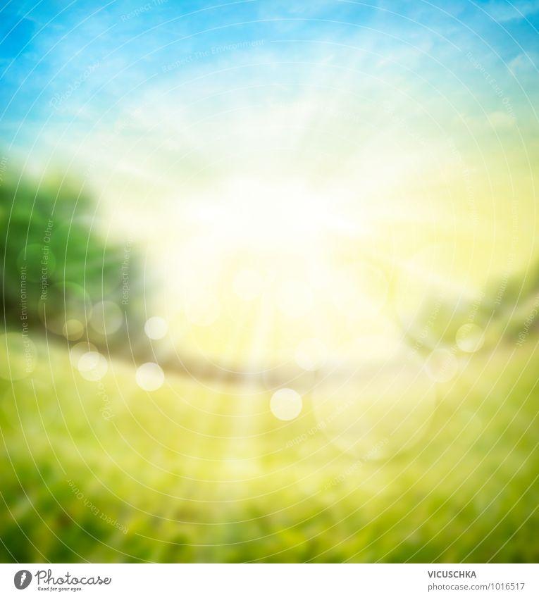 Verschwommene Natur Hintergrund mit Sonnenlicht Himmel Pflanze Sommer Baum Wiese Frühling Hintergrundbild Garten Horizont Park Feld Design weich Schönes Wetter