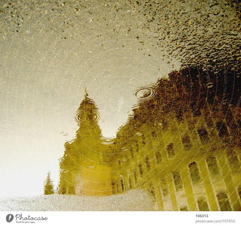 AKTUELLE WETTERLAGE Eindruck Reflexion & Spiegelung Pfütze Asphalt Denkmal Dresden Wahrzeichen Tourist Kunst Bauwerk monumental Sandstein Kuppeldach Orgel Altar
