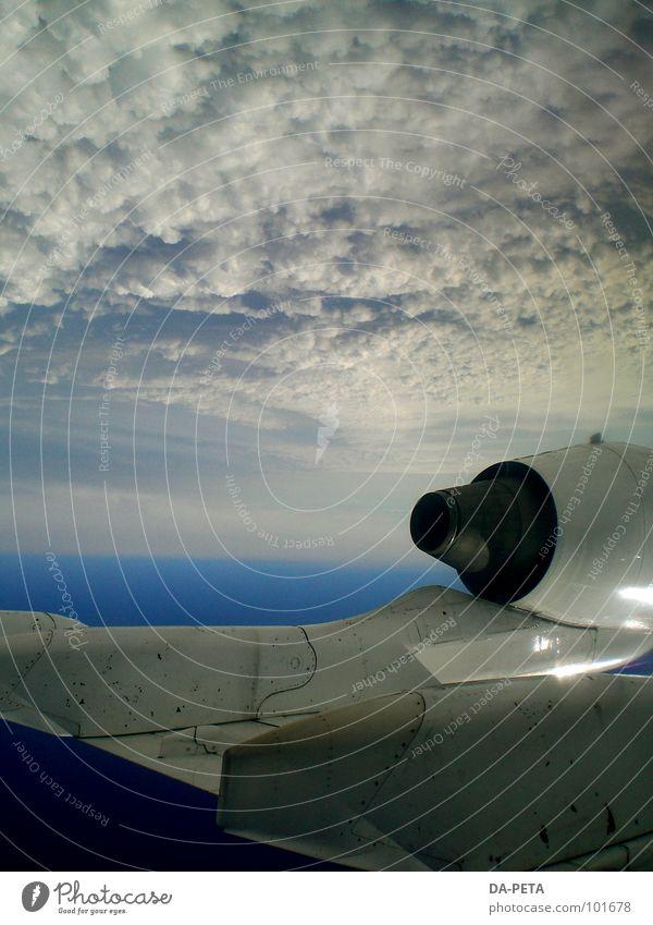 Die Welt steht Kopf Himmel weiß blau Wolken Ferne Flugzeug Umwelt Horizont Beginn hoch Geschwindigkeit Luftverkehr Flügel tief Flugzeuglandung Schweben