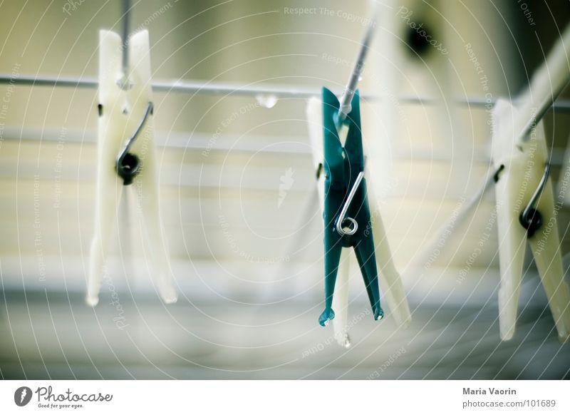 Klammer in der Klemme Wasser Herbst Regen nass Bekleidung Gewitter Unwetter hängen Wäsche trocknen aufhängen Wäscheleine einklemmen