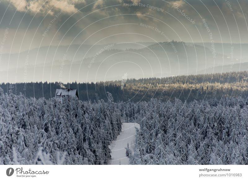 erster Schnee im Gebirge Winter wandern Natur Landschaft Wolken Sonne Wetter Eis Frost Baum Berge u. Gebirge kalt Erzgebirge Fichtelberg Deutschland Hügel