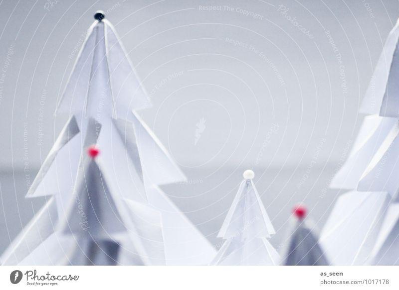Geschmückt Weihnachten & Advent Pflanze Farbe weiß Baum ruhig Winter kalt Stil elegant Dekoration & Verzierung Design modern ästhetisch Spitze Kreativität
