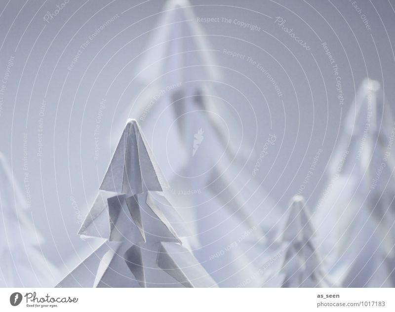 Im Winterwald Natur Pflanze Weihnachten & Advent weiß Baum Landschaft Winter Wald Umwelt Schnee Stil Lifestyle Design Dekoration & Verzierung elegant Idylle