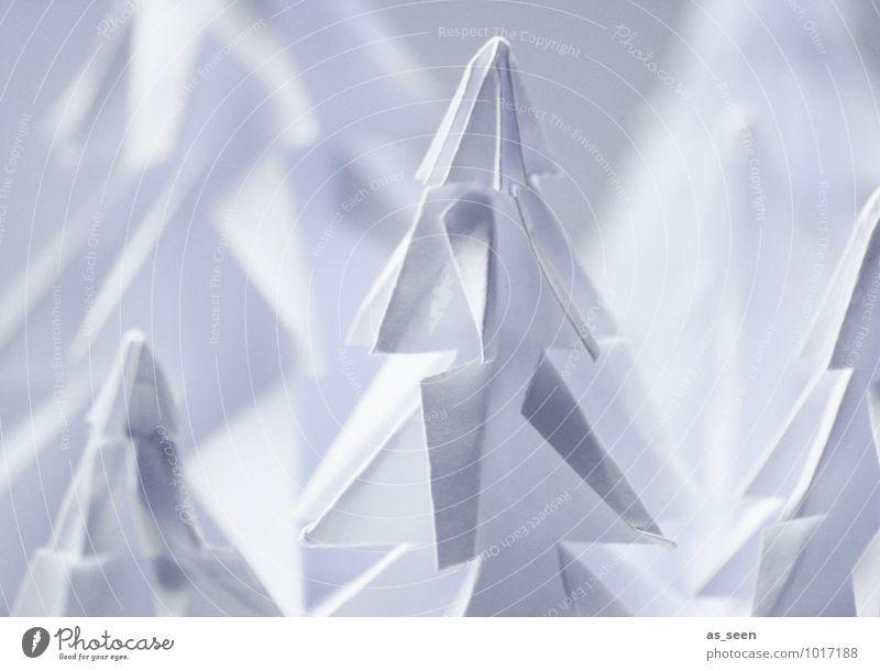 Faltkunst in weiss Natur Weihnachten & Advent Pflanze weiß Baum Landschaft ruhig Winter Wald Umwelt Schnee Stil elegant Dekoration & Verzierung Design stehen