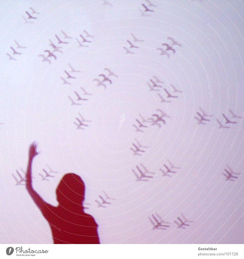 Schattenspiel 03 Frau ruhig Einsamkeit feminin Bewegung Freiheit Haare & Frisuren Kopf Denken Vogel fliegen frei Perspektive Aussicht Vergänglichkeit