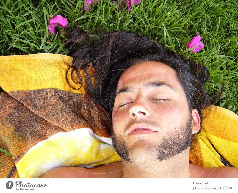 Morfeo 2 Mensch Mann Natur Blume ruhig Auge Einsamkeit Haare & Frisuren träumen Mund Nase Rose Rasen Frieden Bart