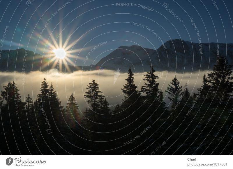 Wolken Sonne Natur Ferien & Urlaub & Reisen Pflanze blau Sonne Erholung Landschaft ruhig Winter Berge u. Gebirge kalt Schnee außergewöhnlich Freiheit träumen Zufriedenheit
