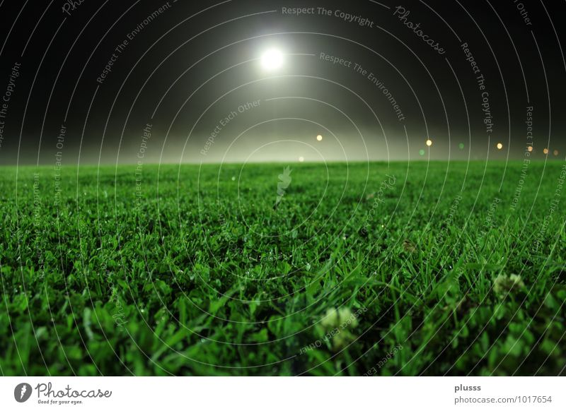 Wo ist der Fussball?! Ballsport Fußball Sportstätten Fußballplatz Nachthimmel Mond Vollmond Sommer Gras Wiese Stimmung Vorfreude Freizeit & Hobby Idylle