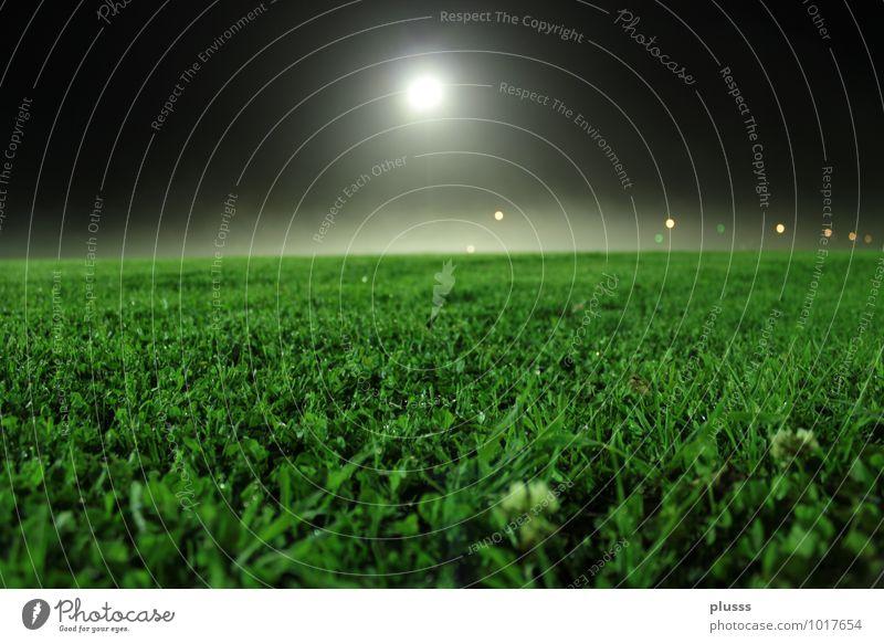 Wo ist der Fussball?! Sommer Beleuchtung Wiese Gras Sport Stimmung Freizeit & Hobby Idylle Fußball Abenddämmerung Vorfreude Mond Scheinwerfer Nachthimmel