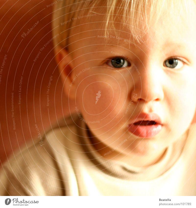 schau mich nicht so fragend an Kind Auge Junge Mund Sehnsucht Kleinkind sanft Fragen