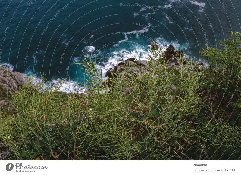 grün Wasser Meer Landschaft Freude Umwelt Küste Frühling außergewöhnlich Stimmung Sand Felsen Lifestyle Freizeit & Hobby Feld wild