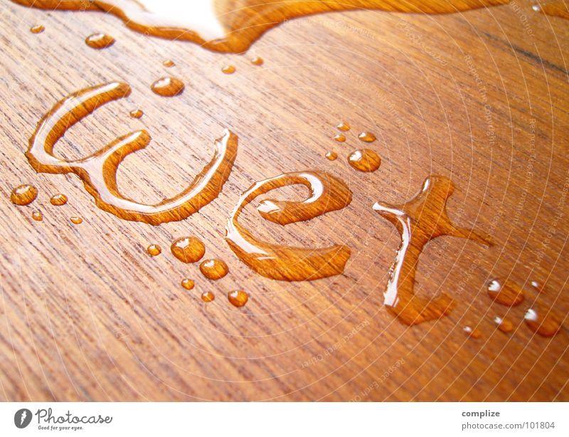 wet° Natur Wasser Holz braun nass frisch Wassertropfen Schriftzeichen Buchstaben weich Wellness Schwimmbad schreiben Dienstleistungsgewerbe Typographie obskur