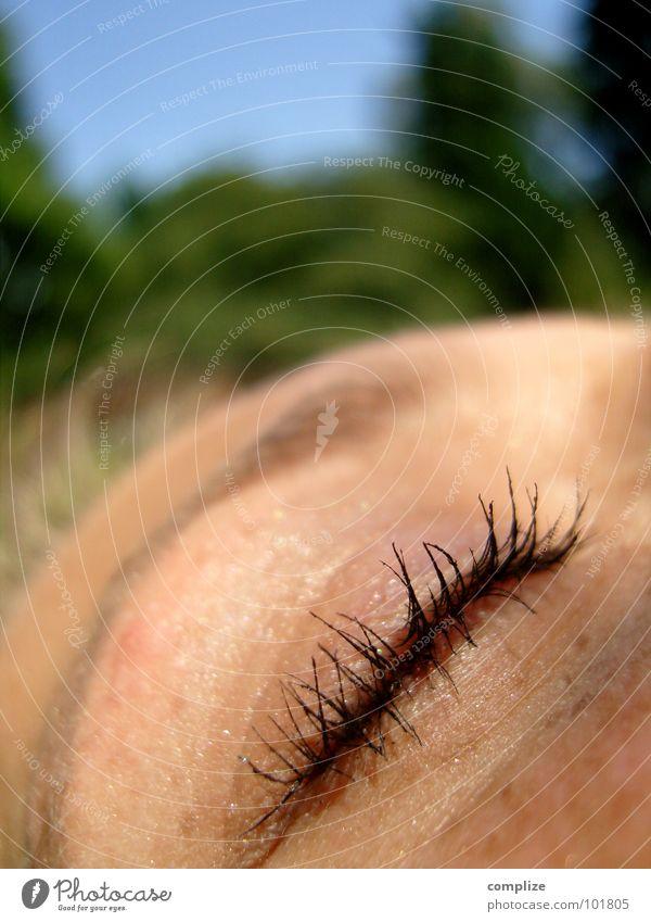 betrug Frau Natur schön Sommer Erholung Erwachsene Auge Schwimmen & Baden Gesundheit träumen braun Park blond glänzend Idylle schlafen