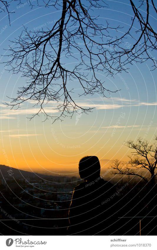 Tschüss, liebe Anne! Neue Horizonte Mensch 1 Landschaft Baum Hügel stehen Aussicht Fensterblick Ferne Ast Winter Stadt Abenddämmerung Sonnenuntergang