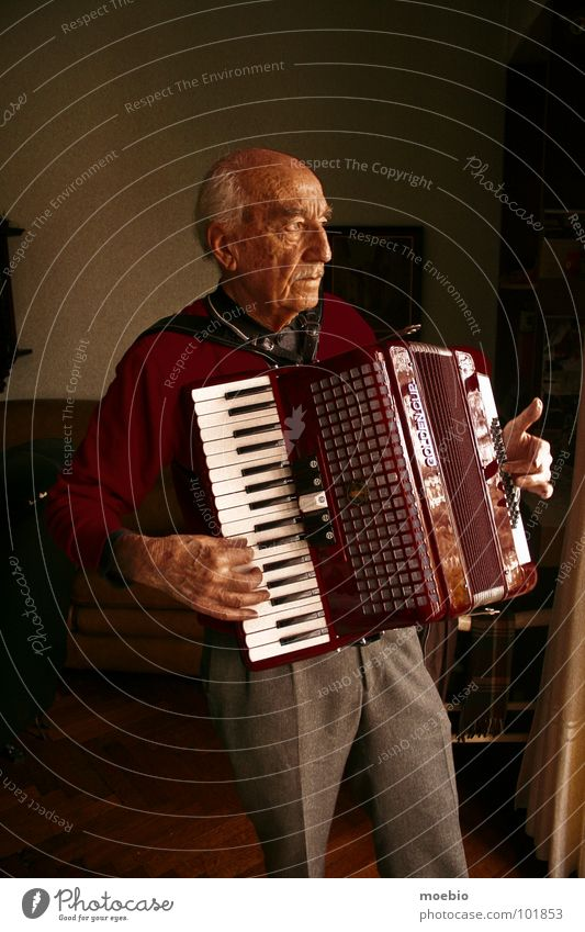 Mio nonno Musik Akkordeon Großvater Senior acordeón fisarmónia música grandfather abuelo accordion
