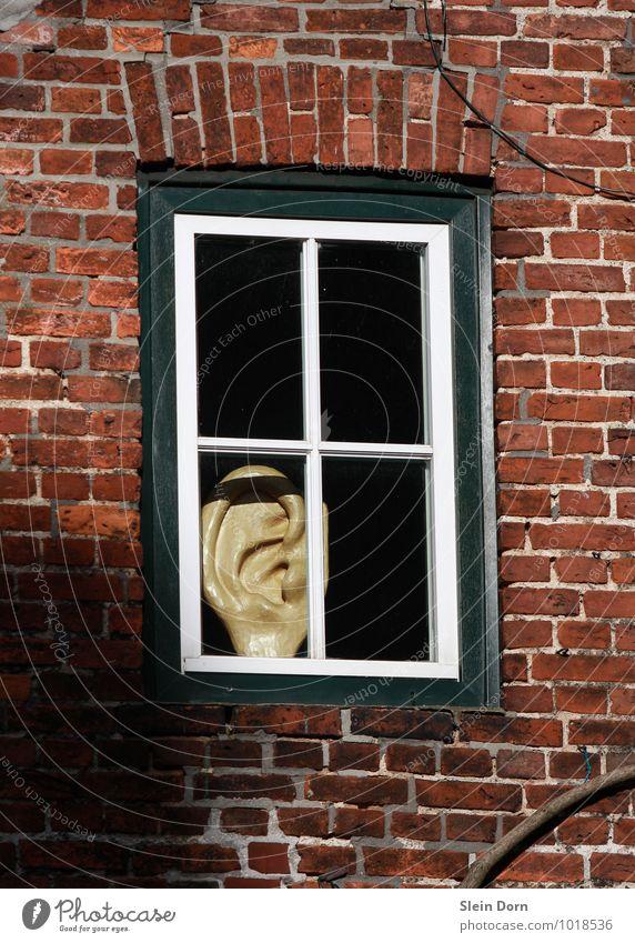 (Ab)hörfenster Stadt Haus Fenster beobachten bedrohlich Kommunizieren Sicherheit Neugier Ohr Dorf Kontakt Medien hören Wachsamkeit Altstadt Radio