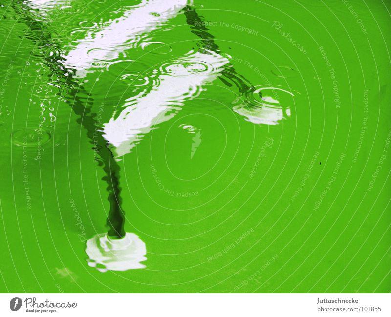 Mach die Beine breit ;-) Schwimmbad grün Sommer heiß Bad weiß tief nass Spielen Sicherheit Leiter ladder Wasser water Juttaschnecke swim swimming Garten garden