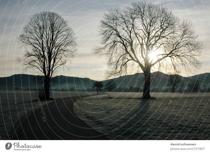 Herbstmorgen Winter Richtung Wiese geschwungen Baum Schwarzwald Hügel Hintergrundbild Horizont hell-blau grün braun Feld Fußweg Sonnenaufgang Raureif