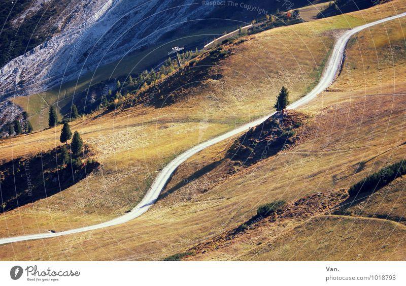 dieser Weg Natur schön grün Baum Landschaft gelb Berge u. Gebirge Herbst Wiese Gras Wege & Pfade braun Felsen Erde wandern Schönes Wetter