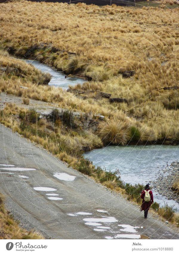 caminando. Ferien & Urlaub & Reisen Ausflug Abenteuer Ferne Freiheit Berge u. Gebirge wandern Anden Wege & Pfade Frau Erwachsene Mann Leben 1 Mensch Natur