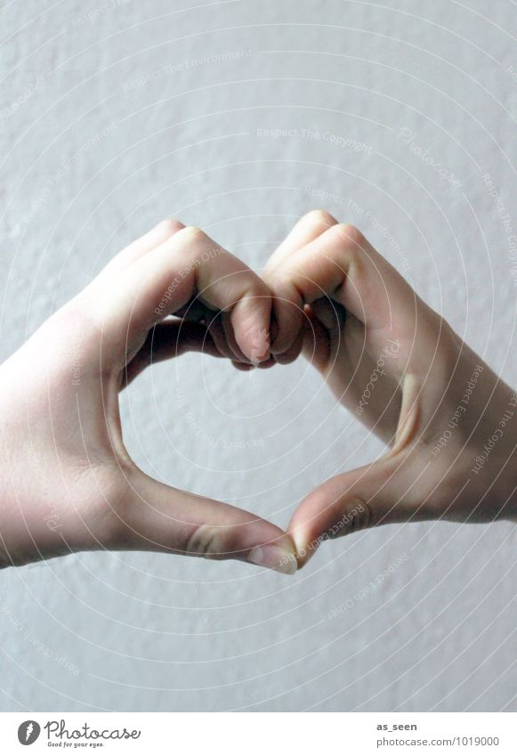 Herz zu verschenken Freundschaft Kindheit Jugendliche Leben Hand 1 Mensch 8-13 Jahre 13-18 Jahre authentisch Coolness frech Freundlichkeit positiv Gefühle