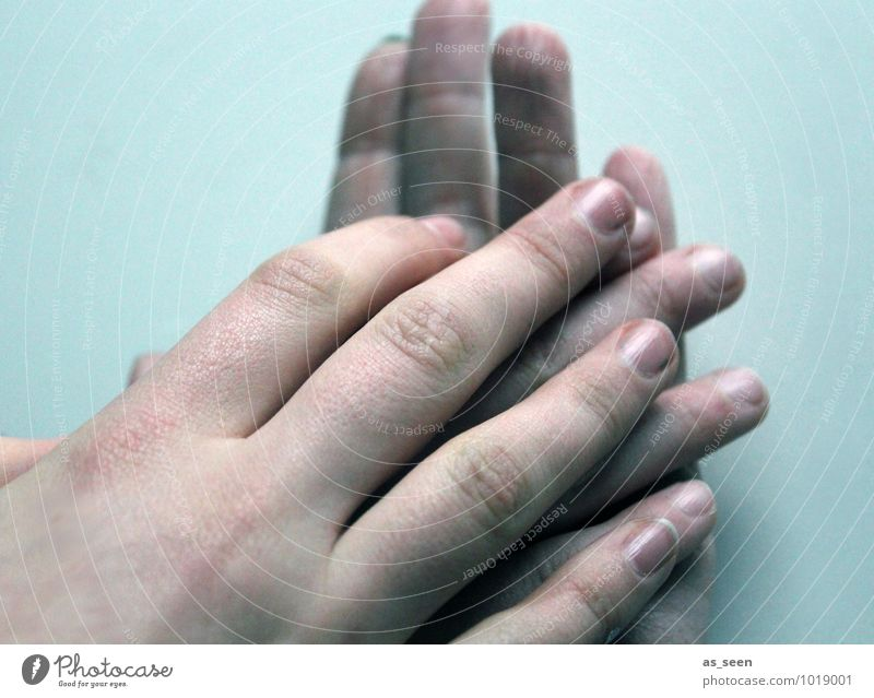 Zusammenhalt Eltern Erwachsene Familie & Verwandtschaft Freundschaft Kindheit Jugendliche Hand Finger 3 Mensch berühren liegen authentisch Freundlichkeit