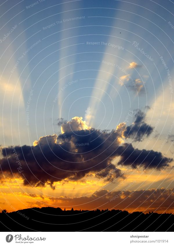 Perfektion in Farbe Himmel Sonne blau schwarz Wolken dunkel kalt Erholung Wärme hell orange Horizont Romantik Streifen genießen