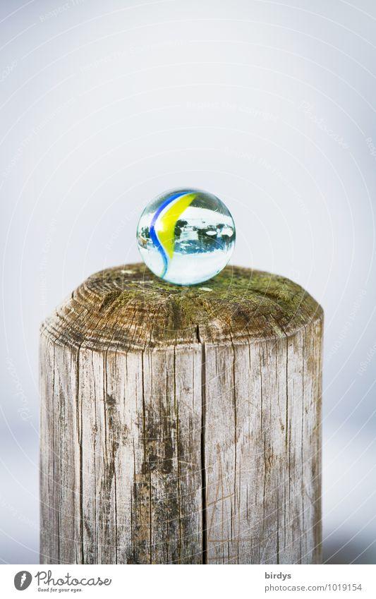 Poleposition Murmel Glaskugel Pfosten ästhetisch frisch positiv rund ruhig Kindheit Glücksbringer durchsichtig Kinderspiel Holz oben 1 Farbfoto Außenaufnahme