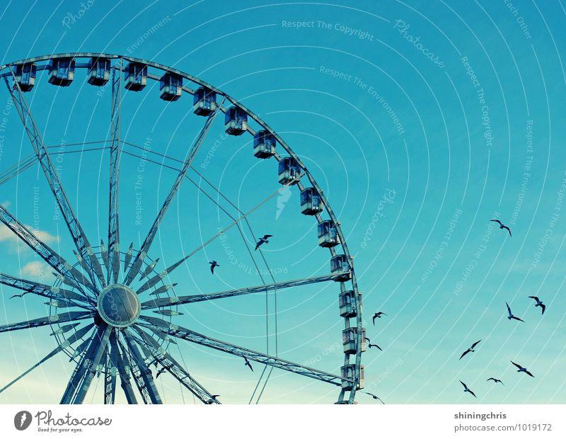 liberte Ausflug Abenteuer Freiheit Himmel Schönes Wetter Paris Vogel Tiergruppe Schwarm Riesenrad fliegen drehen Farbfoto Außenaufnahme Textfreiraum rechts