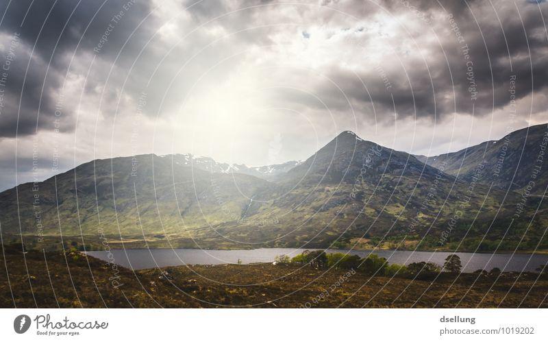 left alone. Himmel Natur Sommer Einsamkeit Landschaft ruhig Ferne Umwelt Berge u. Gebirge Leben Herbst Wiese Frühling Freiheit Felsen Kraft