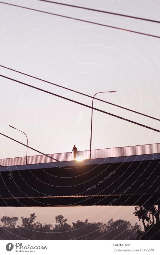Der Sonne entgegen Lifestyle Wohlgefühl Freizeit & Hobby Spaziergang maskulin Mann Erwachsene Körper Arme 1 Mensch 18-30 Jahre Jugendliche 30-45 Jahre Herbst