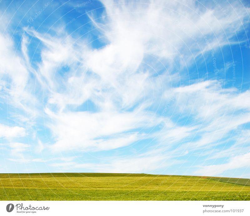 Biofrühstück III Natur Himmel grün blau Sommer Ferien & Urlaub & Reisen Wolken gelb Ferne Wiese Frühling Glück hell Horizont Unendlichkeit Amerika