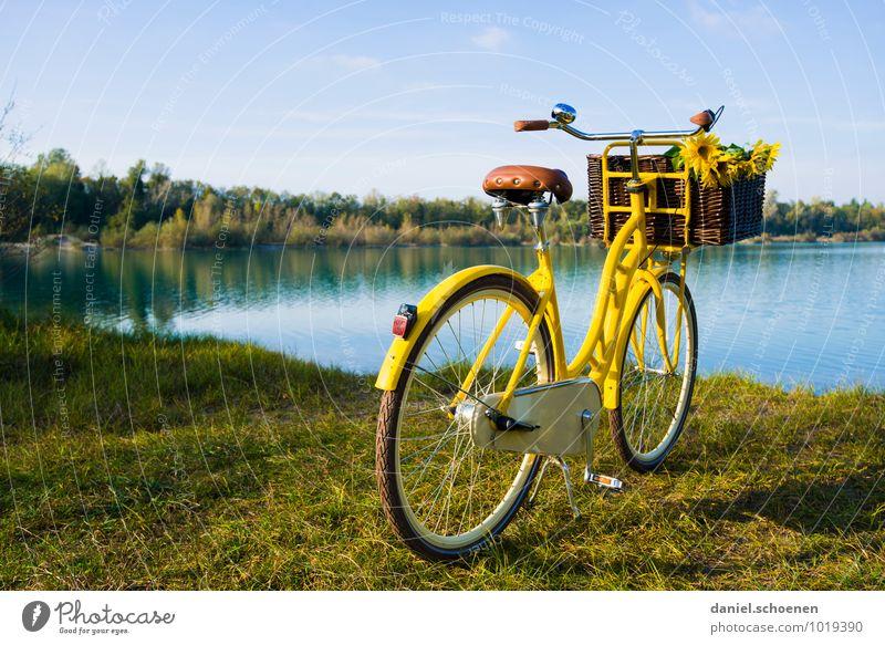 neulich am Baggersee blau Sommer Sonne Erholung ruhig gelb See Freizeit & Hobby Ausflug Fahrradtour